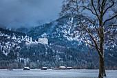 View of Neuschanstein Castle, Schwangau, Allgäu, Bavaria, Germany