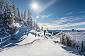 Refuge and snow-covered winter forest on Tegelberg in the Ammer Mountains, Schwangau, Allgäu, Bavaria