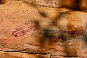 Felsmalereien der Aborigines, Kakadu National Park, Jabiru, Northern Territory, Australien