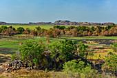 Typische Landschaft mit Felsen und Gum-trees, Kakadu National Park, Jabiru, Northern Territory, Australien