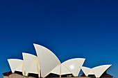 The Opera House glows in the sun against a deep blue sky, Sydney, New South Wales, Australia