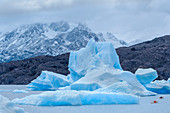 Kayakers paddling among icebergs, Torres del Paine National Park, Patagonia, Chile, South America