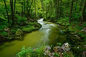 Idyllic mountain stream in the Salzburger Land, Austria, Europe