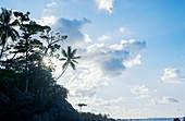 Beach, Drake Bay, Corcovado National Park, Osa Peninsula, Costa Rica