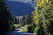 Road to Paleokstritsa, Corfu Island, Ionian Islands, Greece