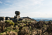 Mont Lozère, Gorges du Tarn, Parc National des Cévennes, Cevennes National Park, Lozère, Languedoc-Roussillon, Occitania, France