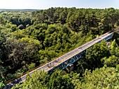 France, Gironde, Val de L'Eyre, Parc Naturel Régional des Landes de Gascogne, cycle tourism, viaduct of Graoux