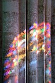 France, Seine-Maritime, Saint Martin de Boscherville, Saint-Georges de Boscherville Abbey of the 12th century, stained glass light in the abbey church nave
