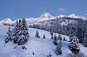 France, Haute Savoie, massif of Aravis, Le Grand Bornand, after a snowfall on the ski area in the valley of the col des Annes, the snowfields and the point Percée at dusk