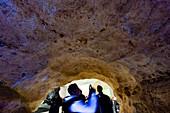 France, Dordogne, Black Perigord, Vezere Valley, prehistoric site and decorated cave classified World Heritage by UNESCO, Montignac-sur-Vezere, Cave of Lascaux IV, International Center of Parietal Art, facsimile showroom