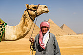 Three pyramids, monuments and burial tombs of the pharaohs Khufu, Khafre, and Menkaure, a tourist guide holding a camel