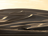 Wind swept barkhan sand dunes on the barrier island of Isla Magdalena, Baja California Sur, Mexico, North America