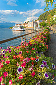 Flowers along the famous promenade surrounding Bellagio and Lake Como at sunset, Como province, Lombardy, Italian Lakes, Italy, Europe