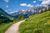 Mountains of the Reiter Alm as seen from the Soleleitungsweg near Ramsau, Upper Bavaria, Bavaria, Germany