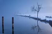 Jetty of St. Bartholomä at Koenigssee in the fog, Upper Bavaria, Bavaria, Germany