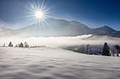 Winter morning mist near Berchtesgaden, Upper Bavaria, Bavaria, Germany