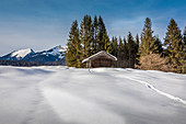 Winter landscape near Krün, Bavarian Prealps, Upper Bavaria, Bavaria, Germany