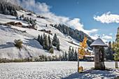 Marterl mit Heiligenfigur im hinteren Villgratental, Osttirol, Tirol, Österreich
