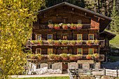 Old farm in Winkeltal, Auservillgraten, Villgratental, East Tyrol, Tyrol, Austria