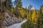 Path to Seebensee in the Gaistal above Ehrwald in Tirol, Tyrol, Austria