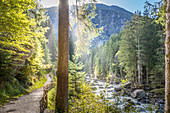 Hiking trail on the Ötztaler Ache in the Ötztal, Oetz, Tyrol, Austria