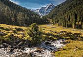 Gallwiesbach im Lüsenstal with Lüsener Fernerkogel (3,299 m), St. Sigmund im Sellrain, Stubai Alps, Tyrol, Austria