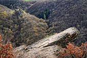 View of the Rauschenberg castle ruins above the Ehrbach Gorge, Rhineland-Palatinate, Germany, Europe