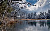 Winter morning at the Sieben Quellen, Eschenlohe, Bavaria, Germany, Europe