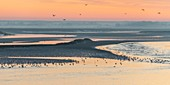France, Somme, Baie de Somme, Dawn on the bay from the quays of Saint-Valery along the channel of the Somme