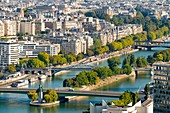 France, Paris, the Swan Islands, the Statue of Liberty, the Seine banks of the 16th arrondissement (aerial view)