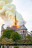 France, Paris, area listed as World Heritage by UNESCO, Ile de la Cite, Notre Dame de Paris Cathedral, fire which ravaged the cathedral on April 15,