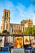 France, Paris, area listed as World Heritage by UNESCO, Ile de la Cite, Notre Dame Cathedral after the fire of April 15,