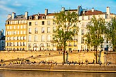 France, Paris, area listed as World Heritage by UNESCO, the banks of the Seine river