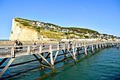 France, Seine Maritime, Pays de Caux, Cote d'Albatre (Alabaster Coast), Fecamp, wooden footbridge at the entrance of the harbour