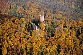 France, Haut Rhin, Ribeauville, Haut Ribeaupierre Castle (aerial view)