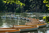 France, Paris, along the GR® Paris 2024, metropolitan long-distance hiking trail created in support of Paris bid for the 2024 Olympic Games, Bois de Boulogne, Inferieur lake