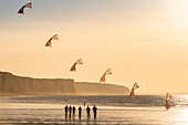 France, Somme, Ault, team of cervicists who trains synchronized kite flying on the beach of Ault near the cliffs at sunset