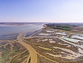 France, Somme, Baie de Somme, Saint Valery sur Somme, Cape Hornu, the salted meadows invaded by the sea during high tides, the channels and the ponds of hunting huts are then clearly visible (aerial view)