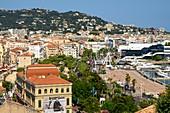 France, Alpes-Maritimes , Cannes, Suquet district and harbour