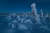 Full moon rising over a snow covered winter landscape, tykky, looking across Russia from Kuntivaara Fell, Kuusamo, Finland, Europe