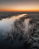 Dawn in winter, Elmley National Nature Reserve, Isle of Sheppey, Kent, England, United Kingdom, Europe