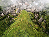 Aerial view on Longsheng rice terraces, also knows as dragon's backbone due to their shape, Guangxi, China, Asia