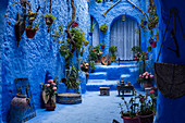 The blue city of Chefchaouen, Morocco, North Africa, Africa