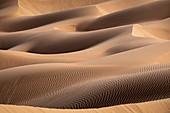 Sand dunes detail in the Rub al Khali desert, Oman, Middle East