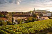 Germany, Bavaria, Bamberg, Vineyard and townscape