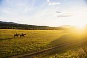 USA,Utah,Salem,Sisters (14-15) riding horses at sunset