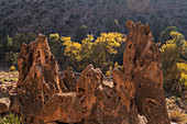 USA,New Mexico,Bandelier National Monument,Rock formations in Bandelier National Monument