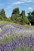 Sightseeing garden, Weihenstephan, Freising, Upper Bavaria, Bavaria, Germany