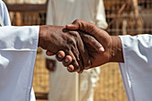 Detail of a handshake deal for the sale of dromedaries in the Al Ain Camel Market, Al Ain, Abu Dhabi, United Arab Emirates, Middle East
