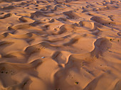 """Aerial view of a four-wheel drive vehicle in dunes during a """"dune bashing"""" excursion in the desert, Arabian Nights Village, Razeen Area of Al Khatim, Abu Dhabi, United Arab Emirates, Middle East"""